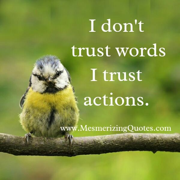 Don't trust words! Trust actions