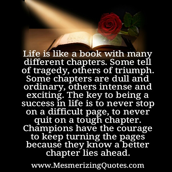 Like is like a book with many different chapters