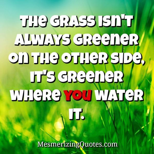 The grass isn't always greener on the other side