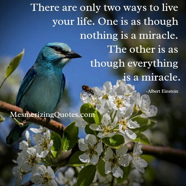 There are only two ways to live your life