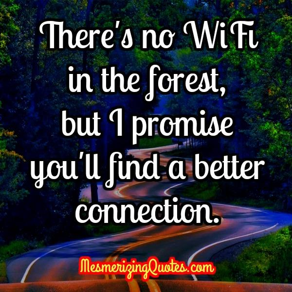 There's no WIFI in the forest